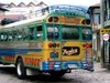 Chicken_bus_2
